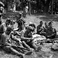 Magyarország a második világháborúban. 3.
