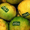 A legfurcsább citrus féle gyümölcsök
