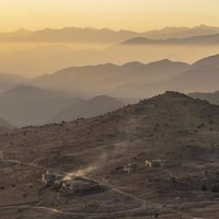 Sáfrányszedés Marokkóban.