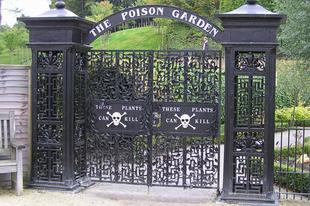 Az Alnwick-i Mérgező kert.