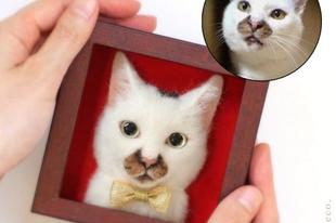 Hiperrealisztikus nemezelt macska portrék