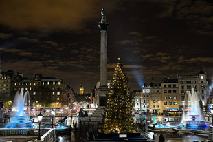 Karácsonyfa a Trafalgar téren.