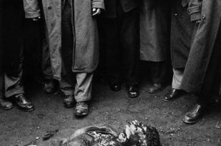 Az 1956-os forradalom és szabadságharc képekben