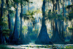 Caddo tó a misztikumok tava