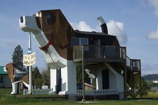 Állatok által ihletett épületek