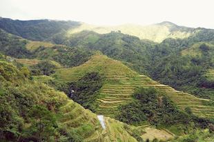 Banauei rizsteraszok