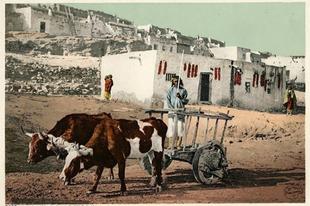 Amerikai indiánok 20. század eleji képeslapokon.