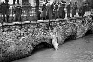 Párizs az 1910-es nagy árvíz idején.