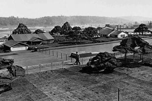 Kamuváros a Boeing gyár tetején a második világháború idején