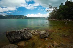 Flores sziget