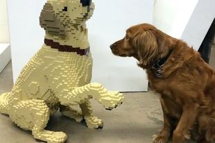 Csodálatos LEGO-szobrok.