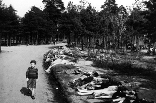 A bergen-belseni koncentrációs tábor.