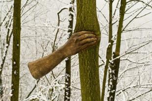 Fába nő a szobor