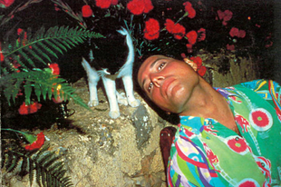 Freddie Mercury imádta a macskákat.