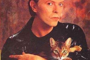 Sztárok a múltból, kedvenc cicáikkal.