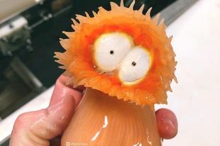 Mélytengeri szörnyeket fotóz a mélytengeri halász.