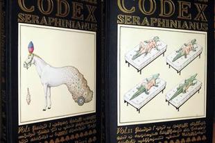 A Seraphinianus-kódex, betekintés egy különös világba.