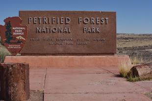 A Megkövült erdő nemzeti park