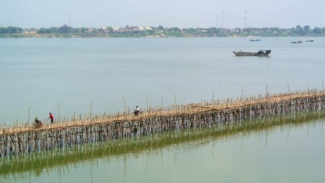 bambuszhid1.jpg