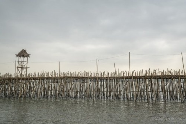 bambuszhid2.jpg