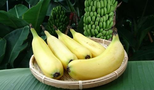 banan1.jpg