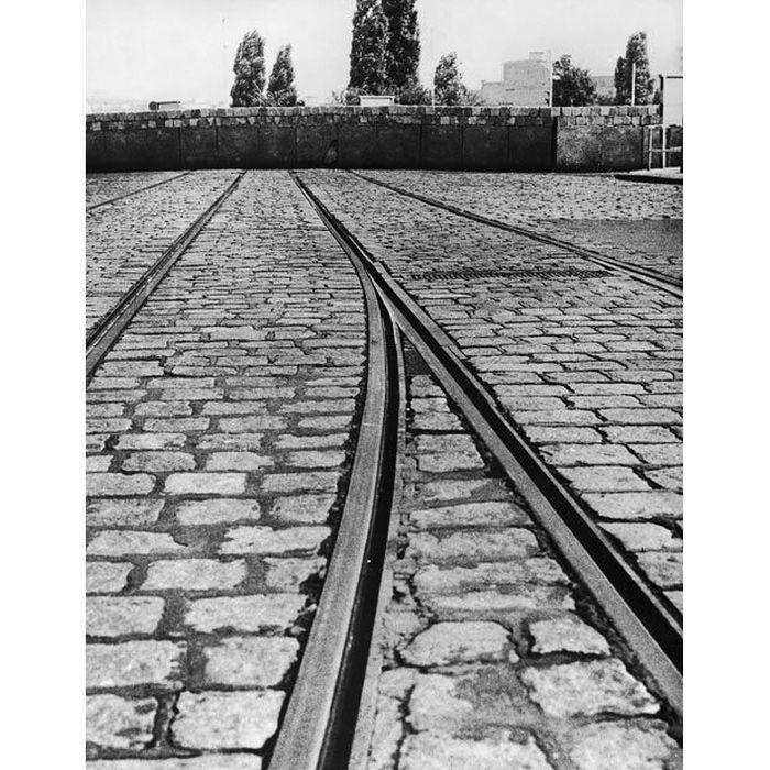 berlini_fal10.jpg