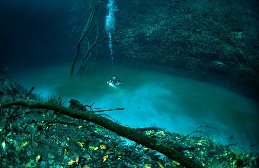 cenote_11.jpg