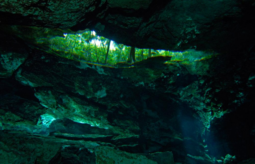 cenote_14.jpg