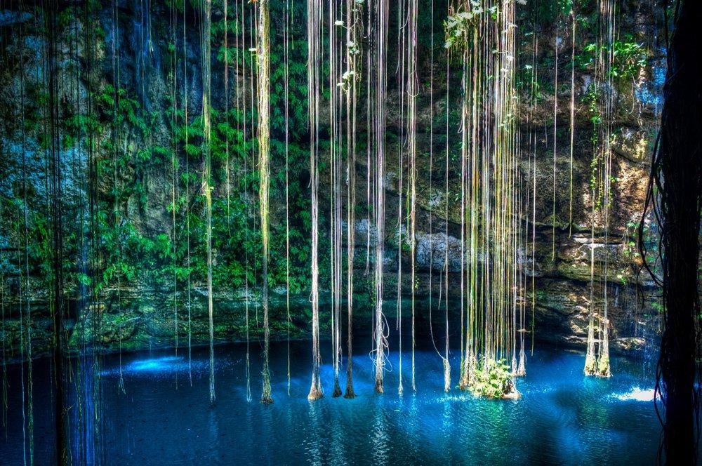cenote_17.jpg