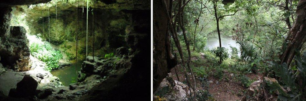 cenote_19.jpg