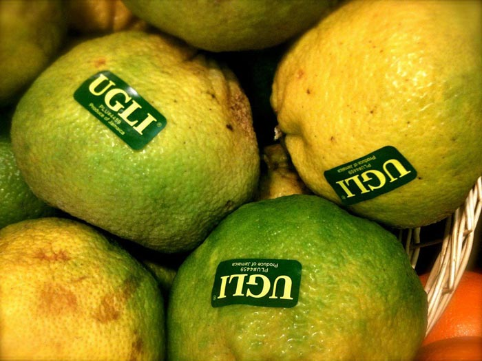 citrom1.jpg