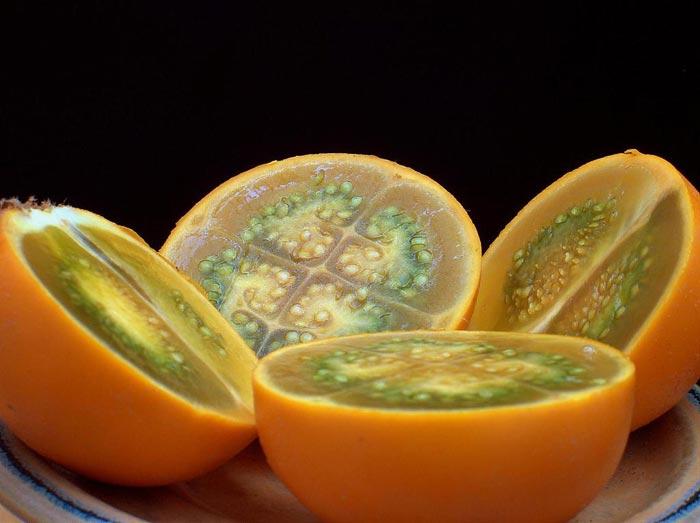 citrom9.jpg