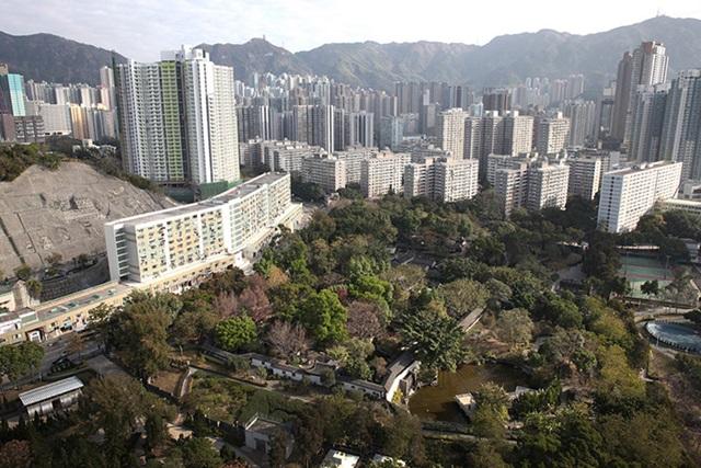kowloon_walled_6.jpg