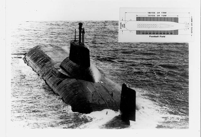 tengeralattjaroja4.jpg