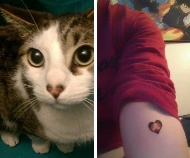 tetovalas7.jpg
