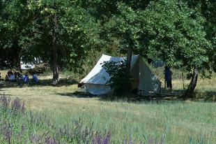 Jelentés a táborból