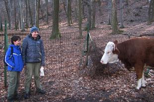 Képek a Lázár Ervin raj februári portyájáról
