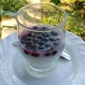 Gyümölcsös kókuszjoghurt az AIP - os tízóraik, uzsonnák hívogató ínyencsége. :)