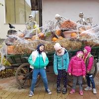Halloweeni forgatag a Family parkban