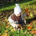 Újpesti ősz