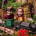 Januárban New York-ban vagy? Irány a botanikus kert
