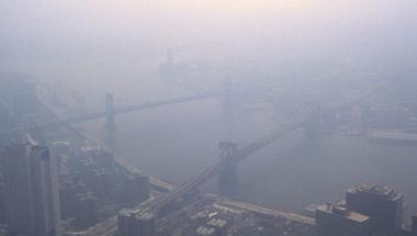 NYC, a hosszú élet titka