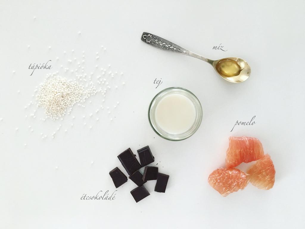 hozzavalok-csokolades-tapioka-puding-5-hozzavalobol.jpeg