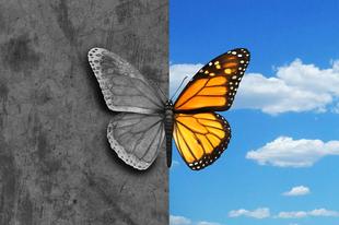 Epigenetika: amit a környezet tesz a génekkel