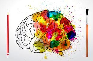 Lateralizációs teszt: melyik agyféltekém a domináns?