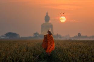 Buddhizmus és a pszichológia