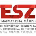 TESZT hetedszer a temesvári magyar színházban