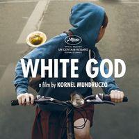 Magyarország a Fehér Isten című filmet nevezi Oscar-díjra