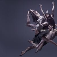 Ahol a kortárs tánc, a balett és a néptánc találkozik