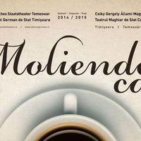 A kávé, akárcsak a színház - Silviu Purcărete rendezés Temesváron